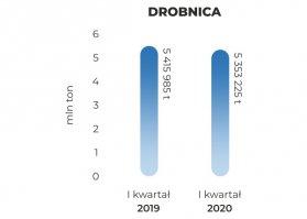 brobnica-Q12020